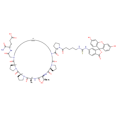 1019226 logo