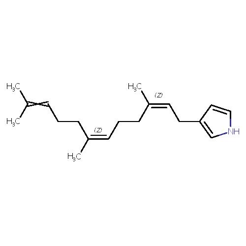 1203523 logo