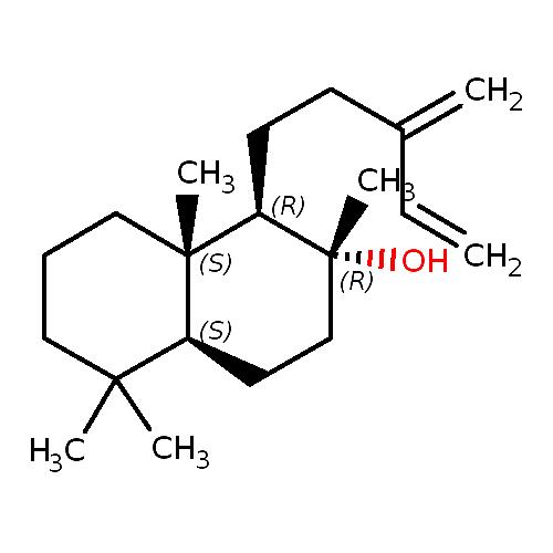 1284396 logo