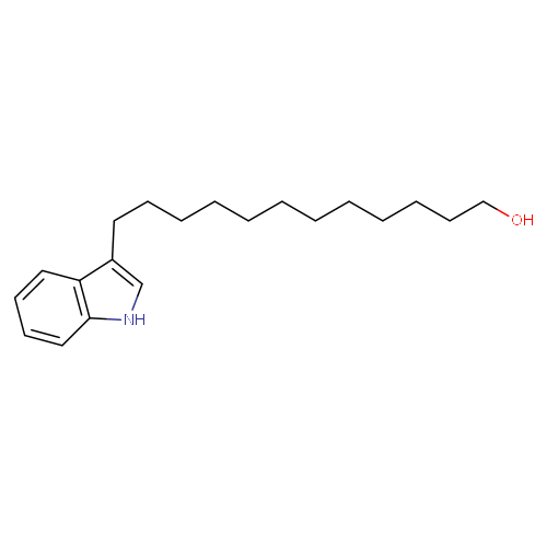 1315558 logo