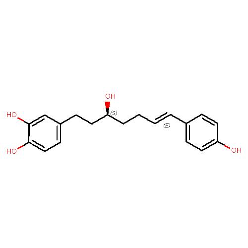1427393 logo