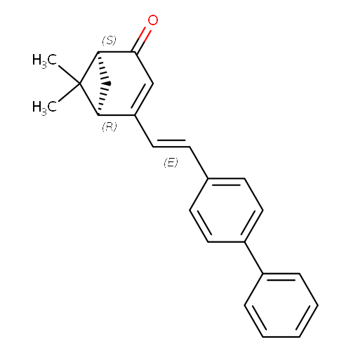 1548838 logo