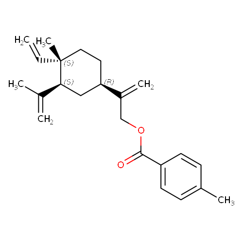 1587840 logo
