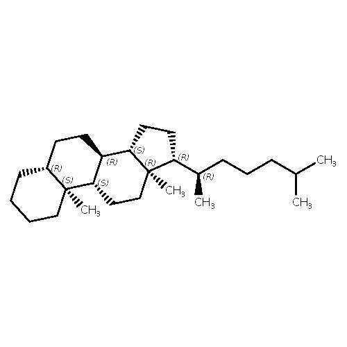 1862452 logo