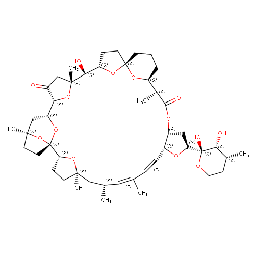 1944049 logo