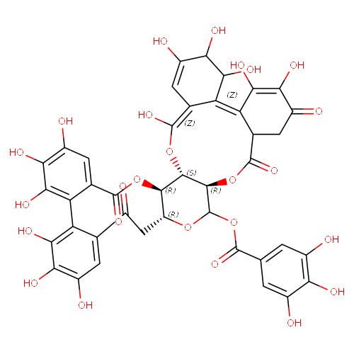 2050115 logo