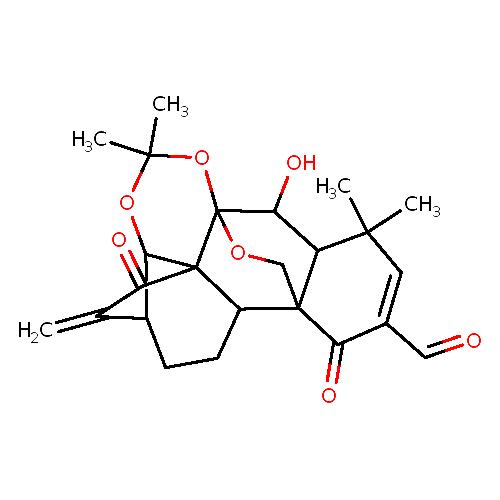 2149634 logo