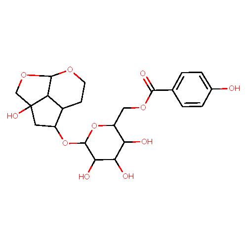 2205597 logo