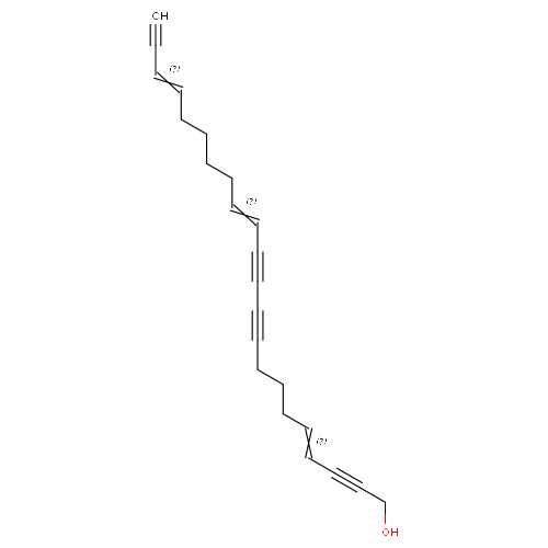 2405955 logo