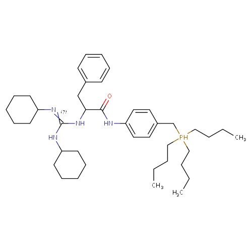 2428271 logo
