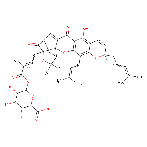 2471630 logo