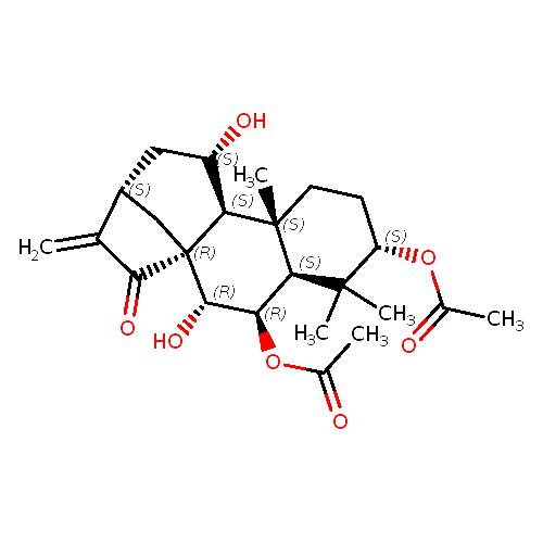 341357 logo