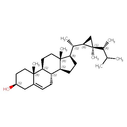 341811 logo