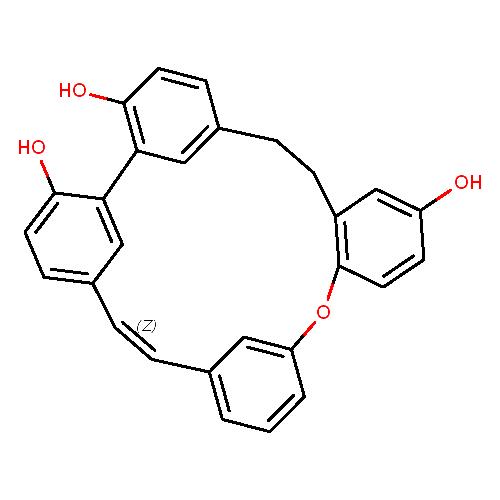420051 logo