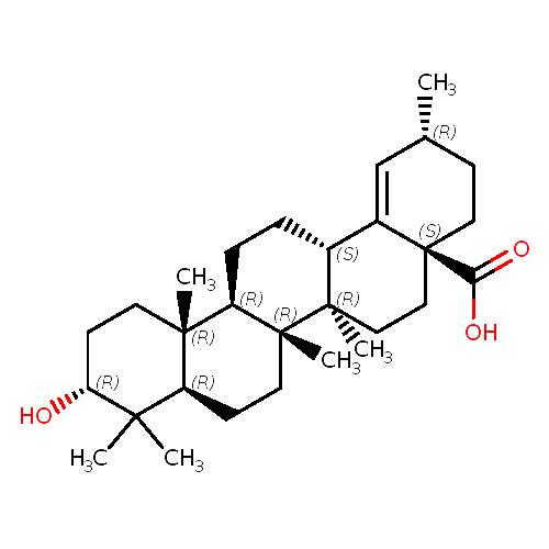 420570 logo