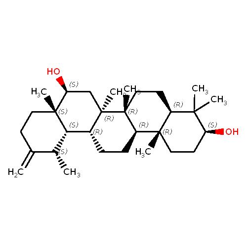 453450 logo