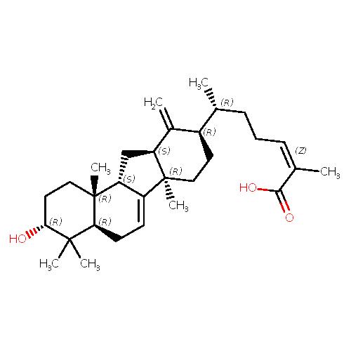 551129 logo