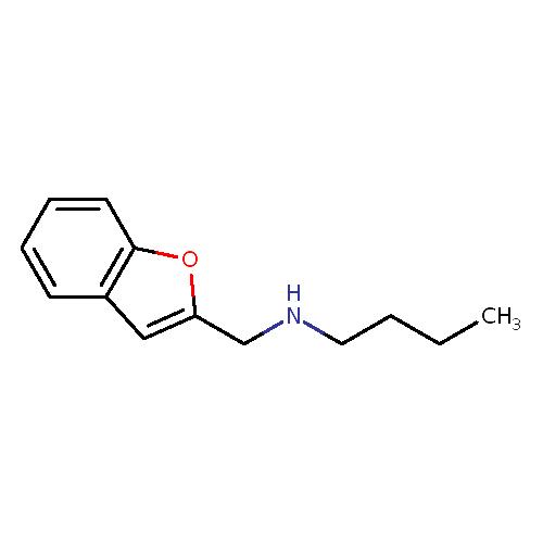 55804 logo