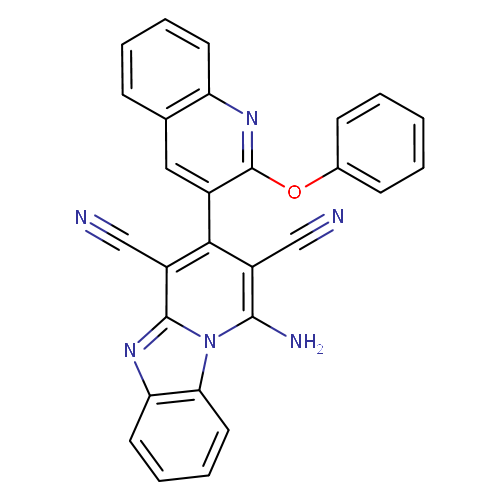 651006 logo