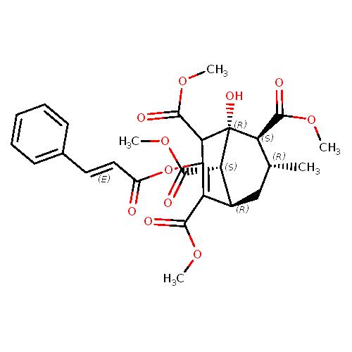 773462 logo