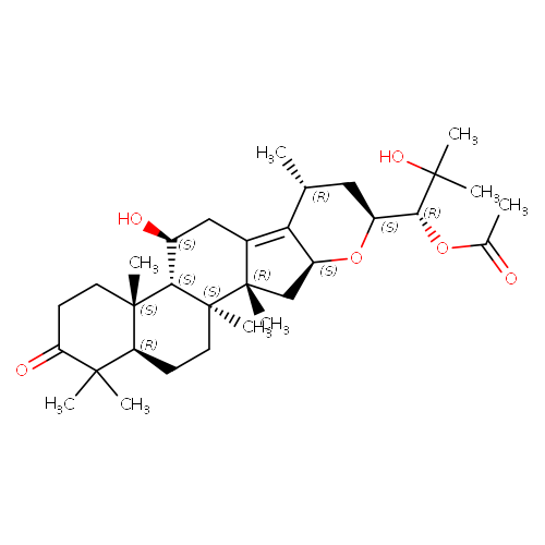 776999 logo