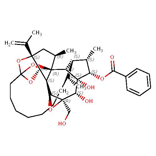 918390 logo