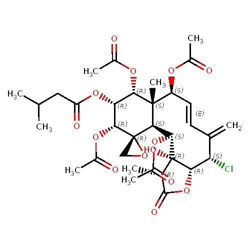 932667 logo