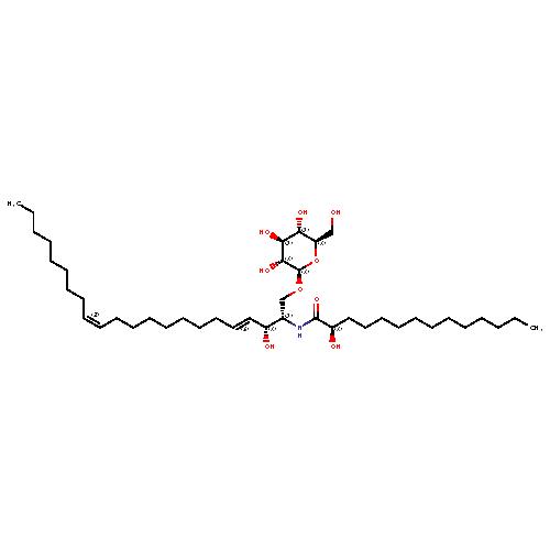 958316 logo