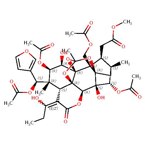 982867 logo