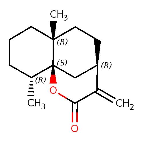 99040 logo