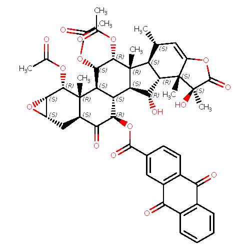 998548 logo
